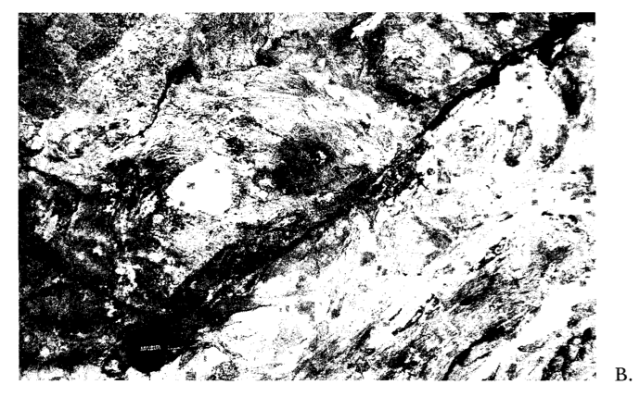 From Losh, S., 1989, Fluid-Rock Interaction in an Evolving Ductile Shear Zone and Across the Brittle-Ductile Transition, Central Pyrenees, France: American Journal of Science, v. 289, no. 5, p. 600–648.